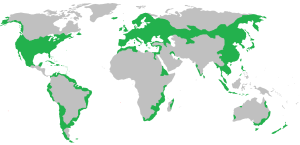 Global distribution of black rats