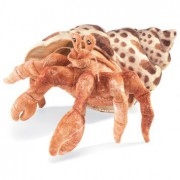 Folkmanis Hermit Crab Hand Puppet, seen at our local public library here in Southern Florida.